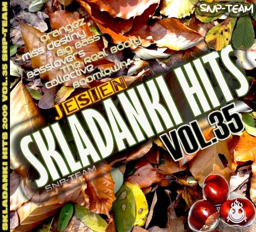 35skladanki-hits-2009.jpg